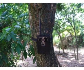 Kovový box pro fotopasti Bunaty